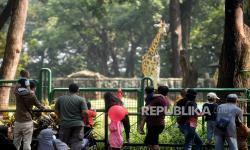 Taman Margasatwa Ragunan Dibuka Hanya untuk Warga Jakarta