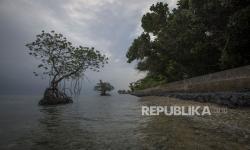 In Picture: Upaya Pencegahan Abrasi di Pulau Sabira