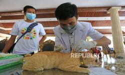 Hewan Peliharaan di Tasikmalaya Divaksin untuk Cegah Rabies