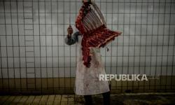 Komunitas Muslim Eropa-Turki Sumbang Hewan Qurban untuk Aceh