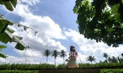 51 Obyek Wisata di Magelang Dibuka Kembali
