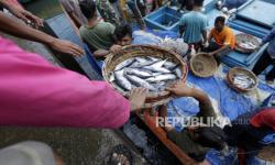 KKP Bakal Terapkan Penangkapan Ikan yang Terukur