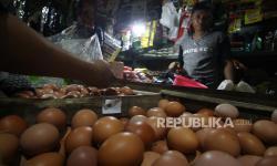 Harga Telur Ayam Ras di Ambon Turun