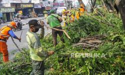 Sudin Pertamanan Jakbar Pangkas 5.592 Pohon