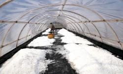 In Picture: Menengok Produksi Garam Sistem Tunel di Kampung Garam Mirit
