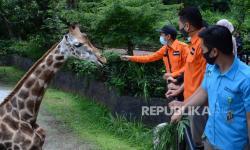 Pengunjung Rakaikan Kebun Binatang Bandung, Besok Puncaknya