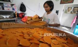 Pemerintah Diharapkan Perluas Peluang Produsen Jamu