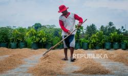Gubes: Pemda Perlu Gencar Sosialisasi Konsumsi Pangan Lokal