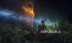 In Picture: Kebakaran Hutan Lindung PT Chevron Pacific Riau