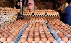 Telur Jadi Protein Paling Gampang Disimpan