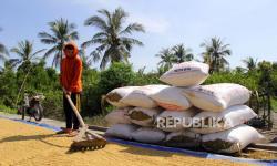 Petani Kecewa Impor Beras Tetap Dilakukan