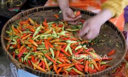In Picture: Harga Cabai Rawit di Pasar Beringharjo Melejit