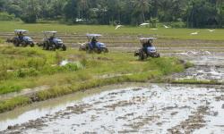 Jelang Musim Tanam, Mentan Ajak Petani Asuransikan Lahan