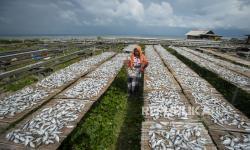 DKI Optimalkan Peran Nelayan Jaga Ekosistem Kepulauan Seribu