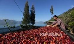 Kesejahteraan Petani Kopi Dinilai Masih Kurang