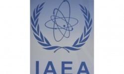 IAEA Curigai Fakhrizadeh Otak Pengembangan Rudal Nuklir Iran