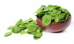 Makanan Kaya Zat Besi yang Bisa Tingkatkan Imunitas
