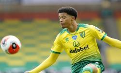 Kunci Tiket Promosi, Norwich Kembali ke Liga Inggris