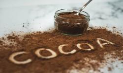 Studi Temukan Manfaat Kakao Terhadap Berat Badan