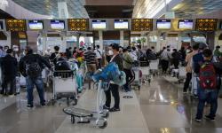 YLKI Minta Kebijakan Penumpang Pesawat Wajib PCR Dibatalkan