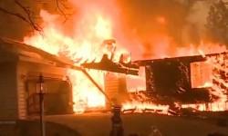 59 Orang Meninggal Akibat Kebakaran Hutan di Kalifornia