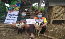 Rumah Zakat Salurkan Bantuan Bibit Domba