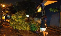 PMI Depok Distribusikan Bantuan ke Korban Bencana