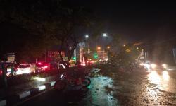 Dinas PUPR Depok Kerahkan 50 Satgas Tangani Pohon Tumbang