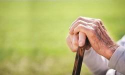 Bupati Bogor Terjunkan Tim Gercep Tangani Lansia Terlantar
