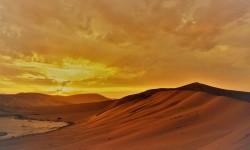 Hal yang Dilakukan Istri Nabi Zakaria Agar Punya Anak