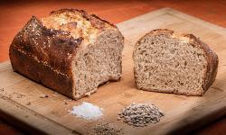 Dibalik Kisah Malik bin Dinar Bertemu Burung Bawa Roti
