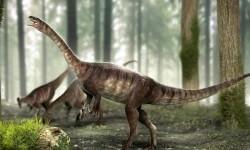 Ilmuwan Ungkap Makanan Terakhir Dinosaurus Sebelum Mati