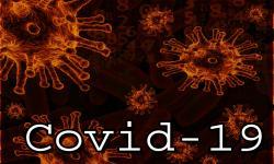 24 Tenaga Klinis Puskesmas Batang Positif Covid-19