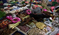 Catatan di Balik Potensi Besar Desa Jadi Penggerak Ekonomi