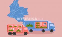 Infografis Kolombia Izinkan Ekspor Ganja Kering