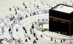 Sapuhi Terus Pantau Perkembangan Umroh dan Haji
