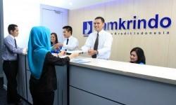 Jamkrindo Beri Jaminan Kredit Bagi Para UMKM Hidroponik
