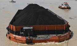 Percepat Hilirisasi, Jokowi Ingin Pasokan Batu Bara Terjamin