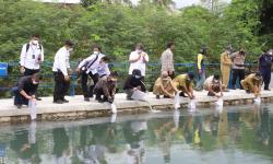 Tebar Benih di Sleman, Menteri Kelautan Dorong Budidaya Ikan