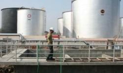 Dampak Pandemi, Proyek LNG Tangguh Train 3 Mundur ke 2021