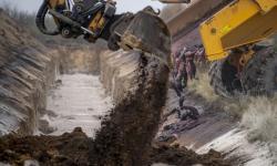 Bangkai Cerpelai di Denmark Menyembul dari Kuburan Massal