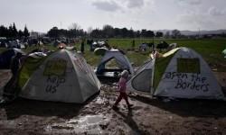 Ribuan Dokter Uni Eropa Desak Evakuasi Pengungsi dari Yunani
