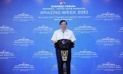 Luhut: Indonesia UEA Sepakati Tujuh Proyek Kerja Sama