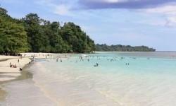 Pertamina Bantu Pelestarian Teripang di Kepulauan Kei