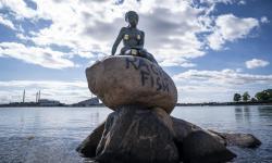 <em>Racist Fish</em> Tertera di Patung Little Mermaid di Denmark