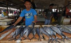 In Picture: Konsumsi Ikan Nasional Tahun 2020 Naik 3,47 Persen