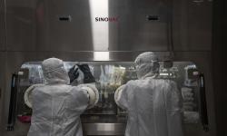 LPPOM MUI Siapkan Dua Skenario Kehalalan Vaksin Covid