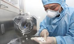 WHO Rekomendasi Penggunaan Klorokuin di Indonesia Disetop