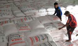 Petani Kulon Progo Diminta Segara Isi e-RDKK Pupuk Subsidi