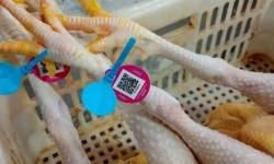 Pemanfaatan Teknologi Kode QR di Pasar Luo Jia Zhuang